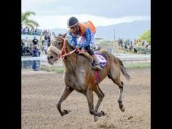 Oneal Scott, aboard MASTER OF HALL, wins the eighth race at Caymanas Park on Saturday, September 1, 2018.