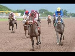 SHE'S A MANEATER (centre), ridden by Anthony Thomas, gallops by BIGDADDYKOOL to win the 39th running of the Burger King Superstakes at Caymanas Park on Saturday, November 11, 2017.