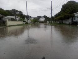 Section of Grants Crescent in Hampton Green flooded after the rains.