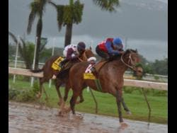 MR UNIVERSE (left) finishing behind ANOTHER BULLET in last Saturday's Caribbean Sprint Championship at Caymanas Park.