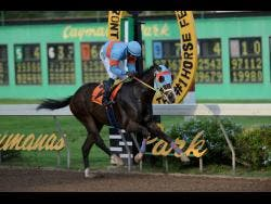 TREVOR'S CHOICE, with Omar Walker aboard, wins race nine over 1100 metres at Caymanas Park on Saturday, October 19, 2019.