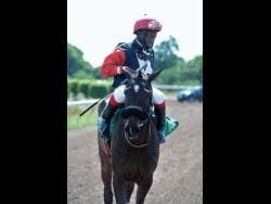 File Photo Jockey Christopher Mamdeen aboard Jamaican Citizen at Caymanas Park on Saturday, February 2, 2019.