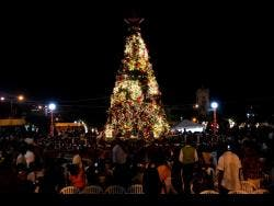 Persons gather at St William Grant Park in downtown Kingston during a Christmas tree lighting ceremony.