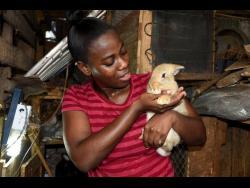 Gewana Reid, a resident of Denham Town, Kingston, plays with one of her furry babies.