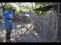 Alvin Facey has been making fish pots for decades and feels more could be done for the fisheries sector as it is important to Jamaica.