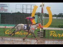 FILE Raddesh Roman, aboard Roy Rogers, was first past the post in race  No. 11 for the Kenneth Mattis OD Memorial Trophy, the featured race of the day at Caymanas Park on Saturday November 7, 2020.