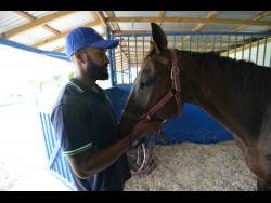 Hyde said that equestrian sports are becoming increasingly popular and invites more persons to get involved.