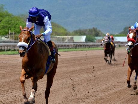 RUN THATCHER RUN (Omar Walker) wins the third race at Caymanas Park last Saturday.