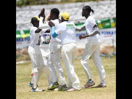 Rio United players celebrate after taking a wicket  against St Margaret's Bay in the SDC community T20 cricket competition match in Buff Bay, Portland, yesterday.
