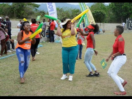 Johnson Mountain supporters celebrate on the pitch at the Goodyear Oval yesterday after their team claimed victory over Heartease in the SDC Community Cricket competition.