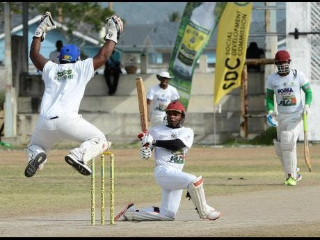 Image result for sdc cricket jamaica star