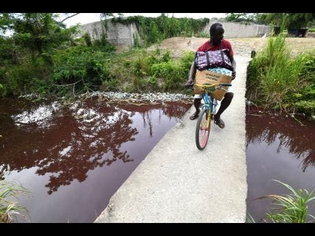 Owen Clarke, a 54-year-old resident of Farquharson Lane in Port Maria, St Mary, crosses over the discoloured Outram River.