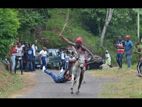 Jockeys Owayne King (front) and Henry Miller fall off their donkeys and crash on to the asphalt while competing in the annual donkey race at Top Hill, St Catherine, yesterday.