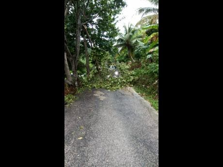 A section of the roadway in Bamboo district, Hanover, which was completely blocked following the thunderstorm that lashed western parishes on Sunday.