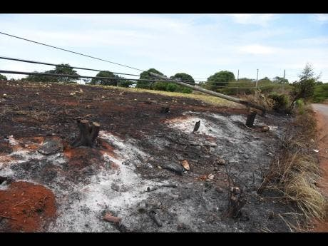 Farm areas of Flagaman, St Elizabeth were destroyed by fire on Friday, August 16.