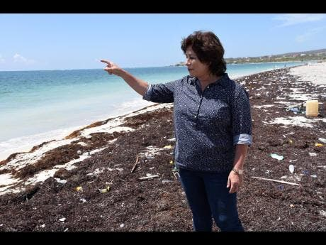 Laura Heron, general manager of Guardsman Hospitality Limited, outlines some of the plans for the revamped Fort Clarence Beach.