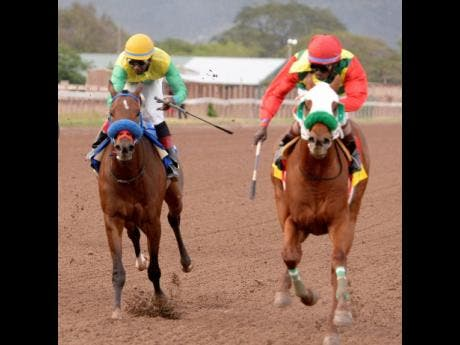 TOONA CILIATA (right) , with Shane Ellis aboard, wins the 2019 Prince Consort Stakes over 1400 metres at Caymanas Park on March 16, 2019.