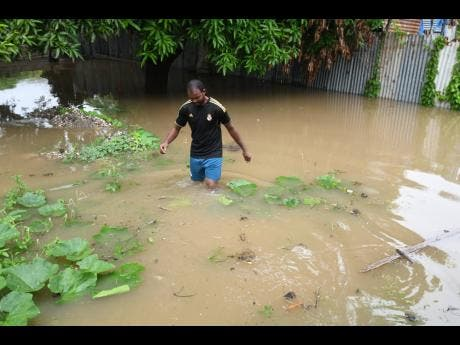 McKoy says the flooding in Hampton Green has been a long-standing issue.