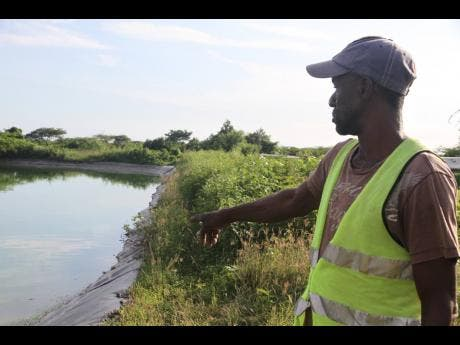 Wayne Sinclair, watchman at Lionel Town sewage treatment plant, points to the location where the body of Oshane Banton was found last Saturday.