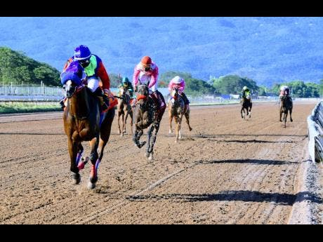 FILE SHE'S A WONDER (left) ridden by Dane Nelson wins the eight race ahead of  at Caymanas Park, on Saturday, February 6, 2021.