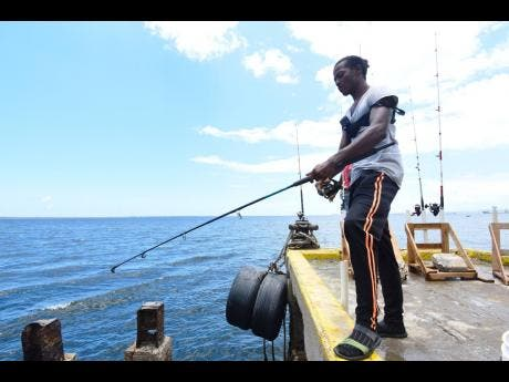 Errol Tello fishes from the docks of the Carib Cement Company in Kingston.