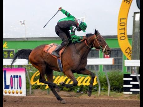 KING AL (Larris Allen) winning the Lotto Championship Trophy over 1200 metres at Caymanas Park on May 14, 2007. Trained by Richard Todd and owned by Connecticut, KING AL won at  odds of 12-1.