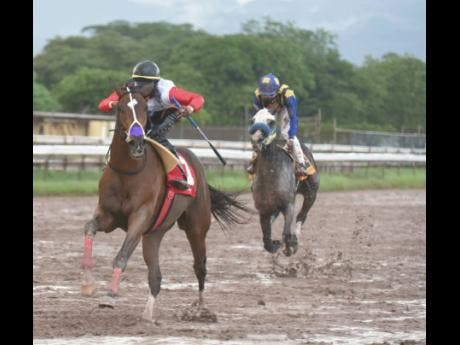 MONEY MONSTER (front) outclassed rivals